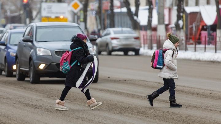 Закрыты три школы и полсотни классов: школьников в Волгоградской области «косят» грипп и ОРВИ