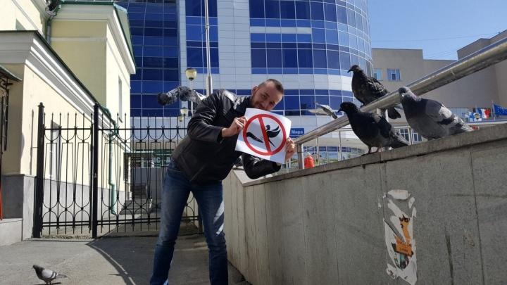 Супергеройская вакансия: музей истории Екатеринбурга ищет сотрудника, который будет распугивать голубей