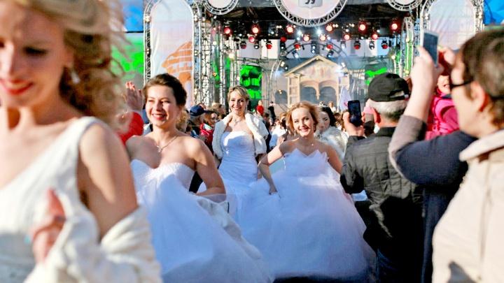 Андрей Малахов приедет в Ярославль женить влюблённых