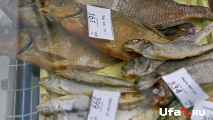 Выловленная на озере в Башкирии рыба стоила двум охотникам 73 тысячи рублей