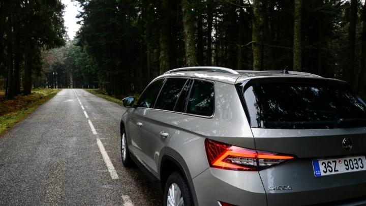 Автомобилистов зажмут разметкой: осложнит ли жизнь лихачам и хамам сужение полос