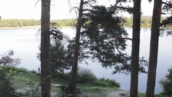 В Дзержинске вырубят десятки сосен и застроят берег озера