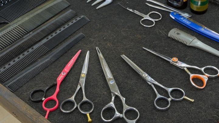 Не красиво: в курганских салонах парикмахеры работают неофициально и не дают чеки клиентам