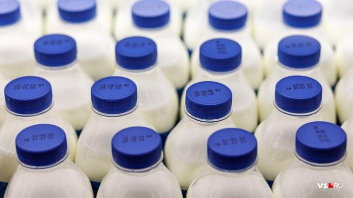 «Сколько коров ни рисуй, надоев больше не будет»: молоко в Волгограде назвали самым дорогим в стране
