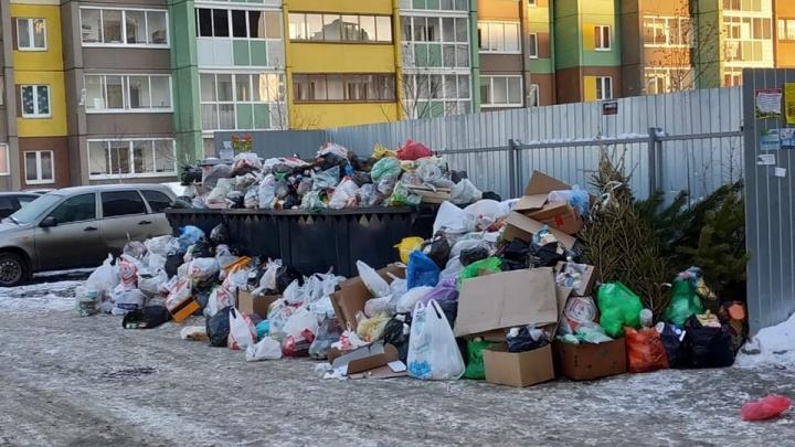 «Платим больше — качество отвратительное»: челябинцы пожаловались на вывоз мусора в праздничные дни