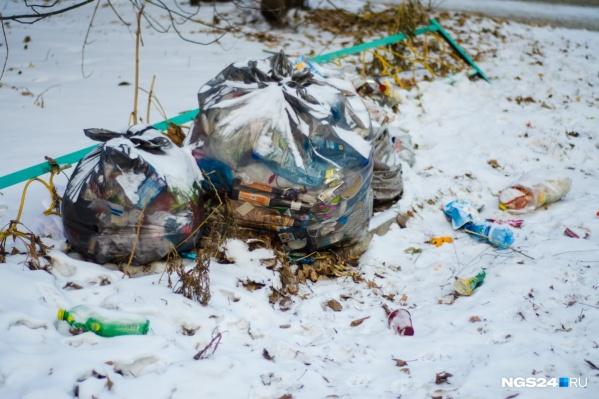 Платить за мусор по новым тарифам красноярцы начнут с 1 января