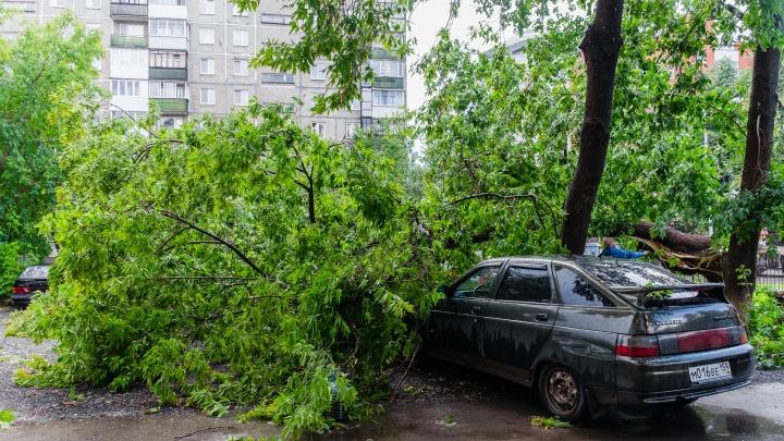 На День города в Перми объявили штормовое предупреждение