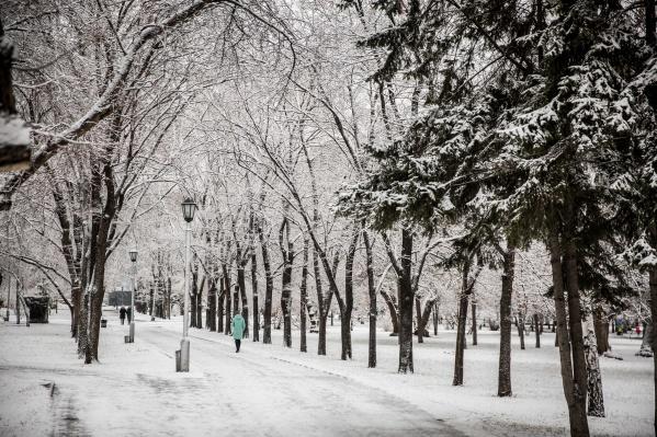 Рано утром новосибирцы начали выкладывать фотографии своих дворов и улиц после ночного снегопада