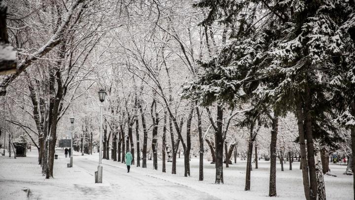 Новосибирцы завалили соцсети красивыми фотографиями снега в Академгородке