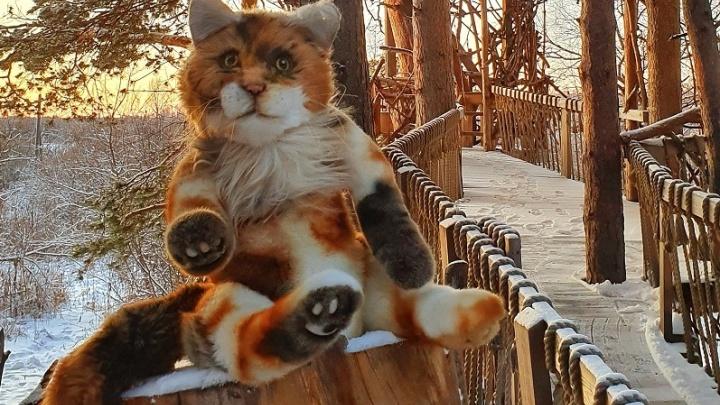Рыжий кот подарит поездку в «ГНЕЗДО»: в Тюмени стартовал конкурс детских рисунков