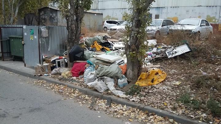 «Здесь бегают крысы»: рядом с детским садом в Волгограде образовалась бесхозная свалка