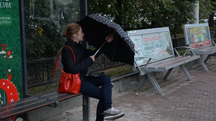 Синоптики пообещали Екатеринбургу потепление до +8 градусов