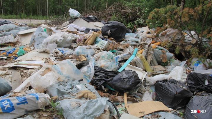 54 вагона — примерно такой объем: столько мусора вывезли с незаконных свалок в Архангельской области