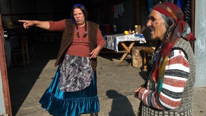 Жители Сосновоборска собирают подписи за выселение поселившегося рядом табора цыган
