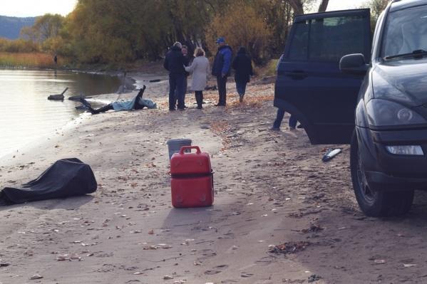 Тело нашли на берегу