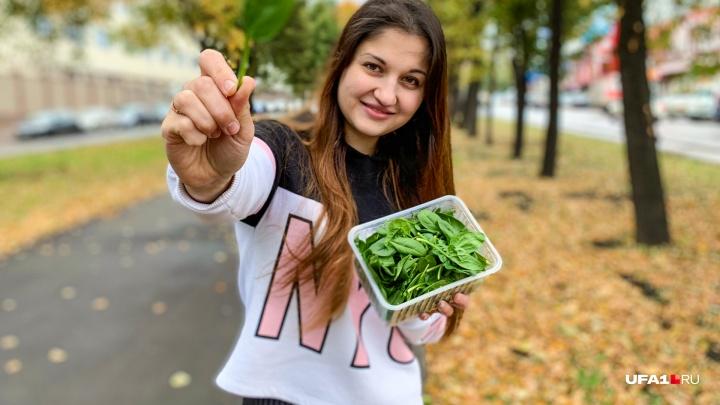 Что съесть, чтобы похудеть: три простых рецепта правильного осеннего меню