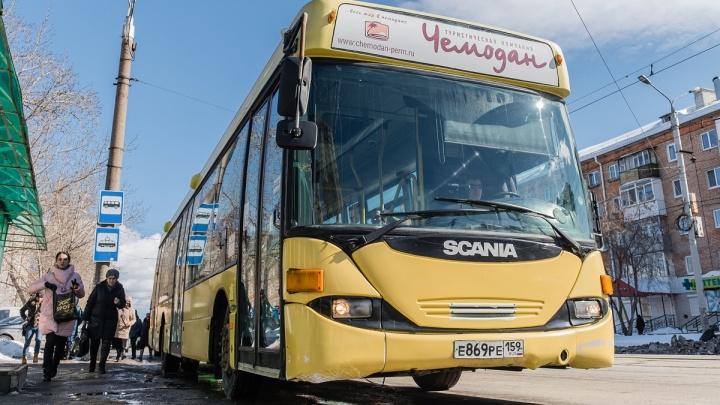 С 1 мая в Перми изменится движение автобусов и появятся бесплатные пересадки