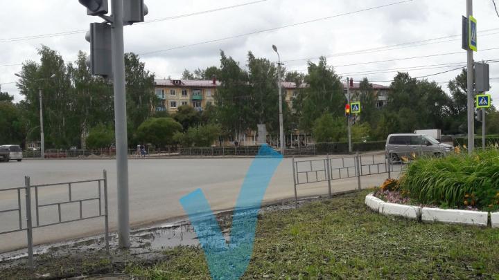 В Омске поставили новый пешеходный светофор — он ведёт из клумбы в лужу