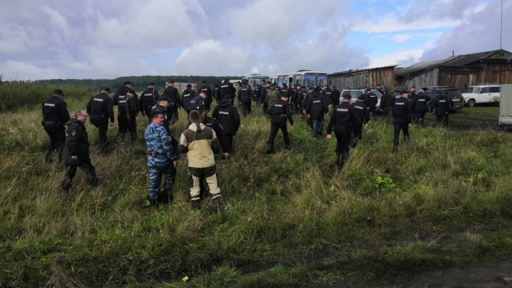 Волонтёры наглядно показали масштаб поисков 4-летнего ребёнка в лесу. Спасение жизни в 7 фото