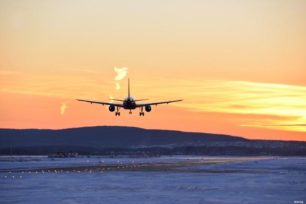 Самолет летел в Москву из Новосибирска