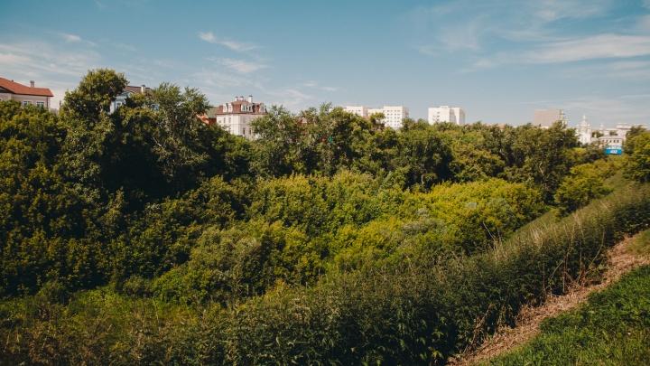 В решении строить общежитие в логу Тюменки отсутствует логика. Почему —объясняет журналист 72.RU