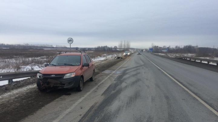 На трассе в Башкирии водитель за рулем «Гранты» насмерть сбил лося