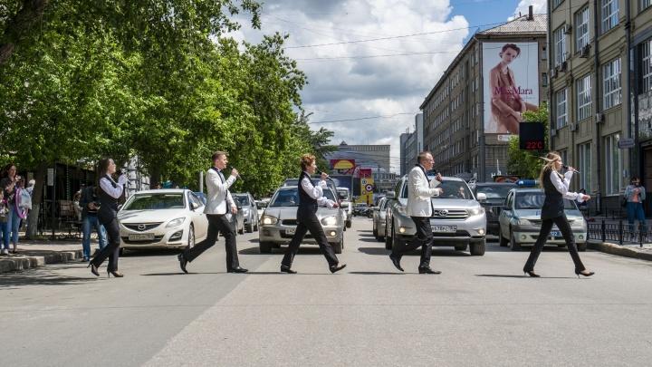 Музыканты спели хиты The Beatles на зебре у «Победы»