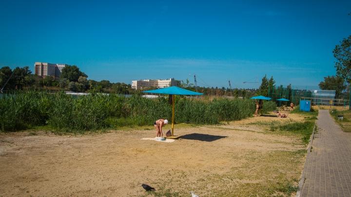 В каждом районе Ростова пообещали сделать по пляжу