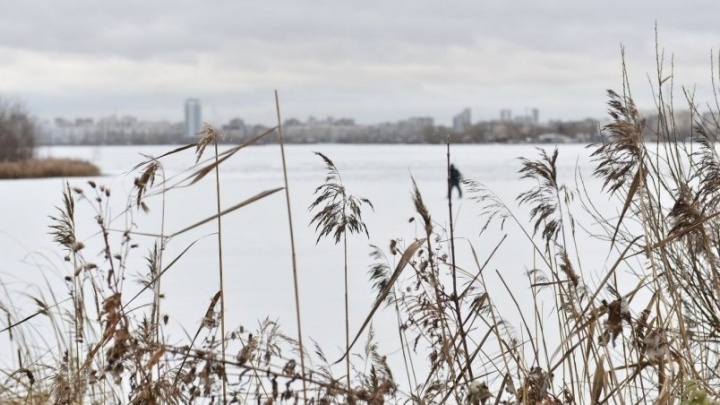 На Елизаветинском пруду подо льдом нашли тело мужчины
