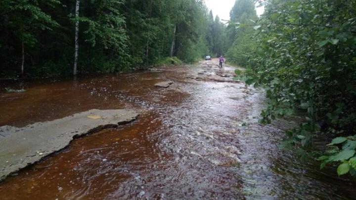 В Прикамье из-за дождей размыло дорогу: вода поднялась на полметра