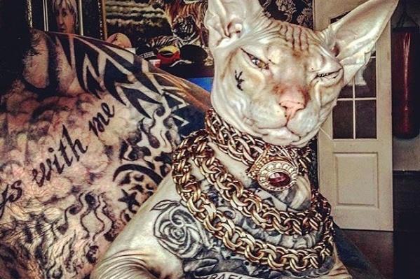 Татуировки Бесе сделал хозяин