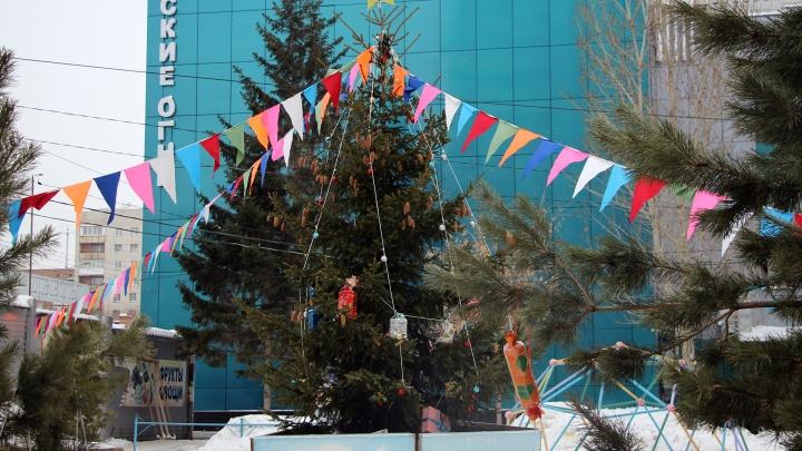 Молодой житель Омской области украл 42-метровую гирлянду с ёлки на центральной площади
