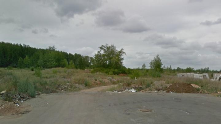«Как в далёкой деревушке»: детей из «Паркового-2» вынудили ходить в школу по 6 км через лес и поля