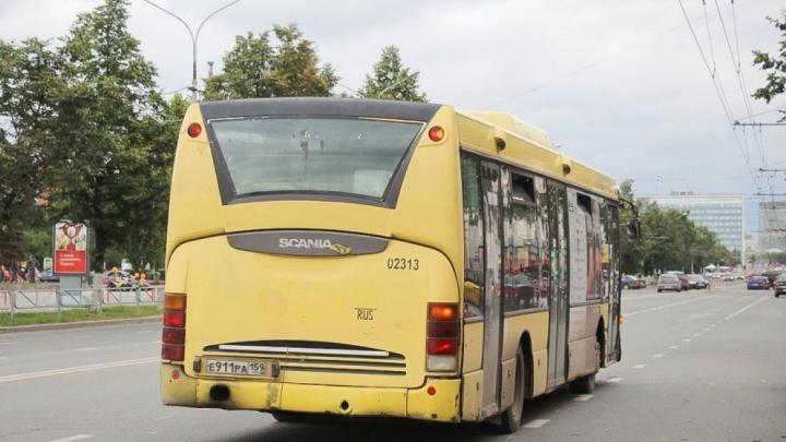 На новом автобусном маршруте до пермского аэропорта сократят количество остановок