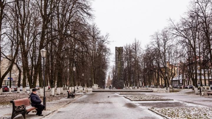 Новый год без снега: в Ярославле будет аномально теплая неделя
