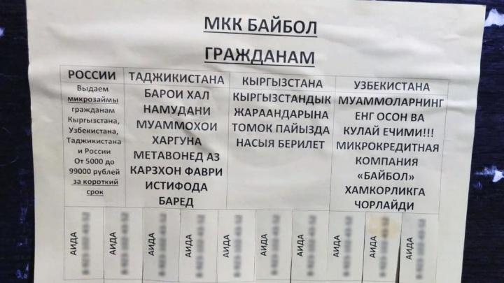 В Новосибирске появились объявления о микрокредитах на четырёх языках