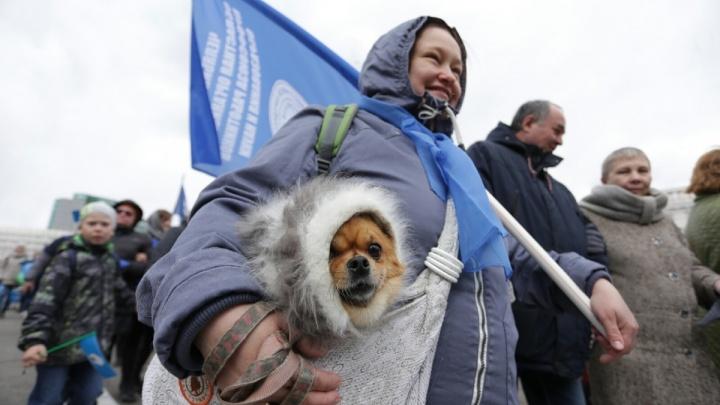 Холод собачий — настроение отличное: смотрим десятку лучших снимков с праздника 1 Мая в Челябинске