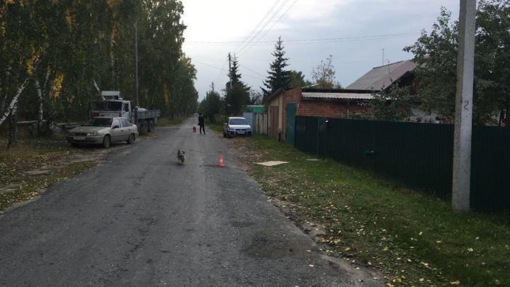 В Зауралье за день в ДТП пострадали три ребенка