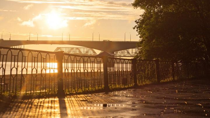 Погода опасна: в Ярославской области объявили оранжевый уровень предупреждения