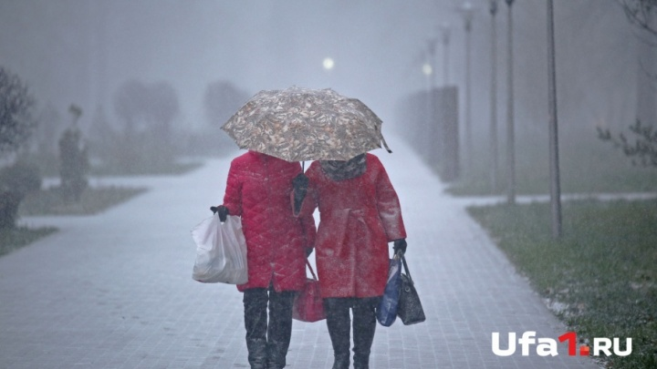 Синоптики предупредили жителей Башкирии о сильном гололеде и штормовом ветре