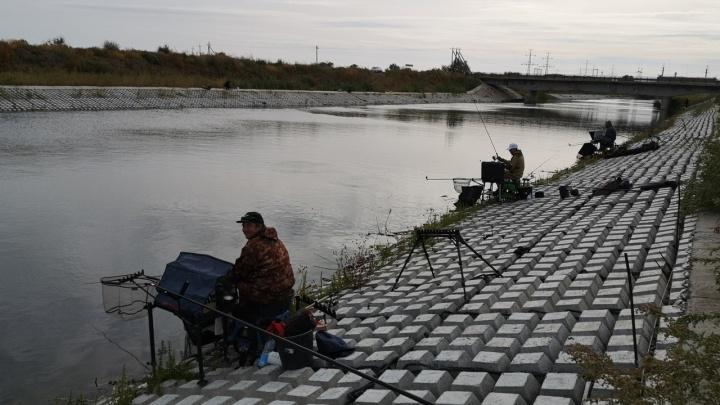 «Ветер не пугает»: в Волгограде определяют лучшего рыбака