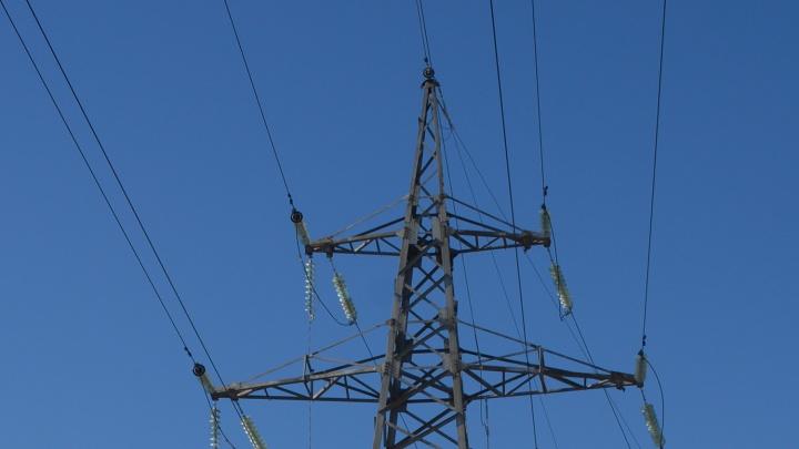 В поле голые столбы: воры украли 12 километров проводов с ЛЭП под Новосибирском