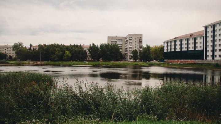 На проект расчистки пруда Утиного выделили 2 миллиона рублей. Можно ли там будет купаться?
