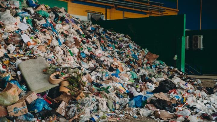 Тюменцы, возмущенные мусорной реформой, обратились к Владимиру Путину