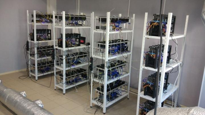 Сами намайнились: екатеринбуржцы построили бизнес на продаже криптоферм под заказ