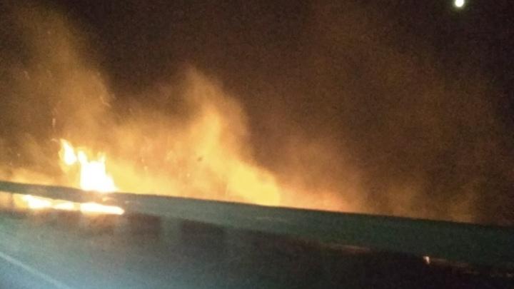 Огонь дошел до трассы: под Тюменью из-за окурка и сильного ветра загорелось поле