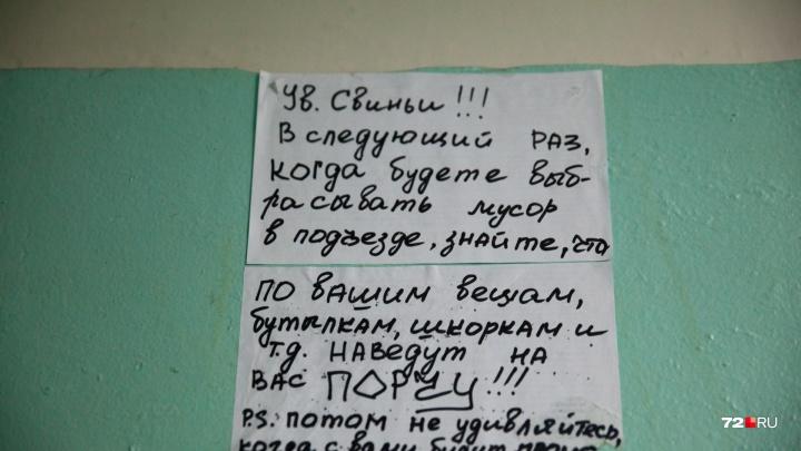 Стены говорят: смотрим, что пишут тюменцы на заборах и в подъездах. 25 спорных кадров