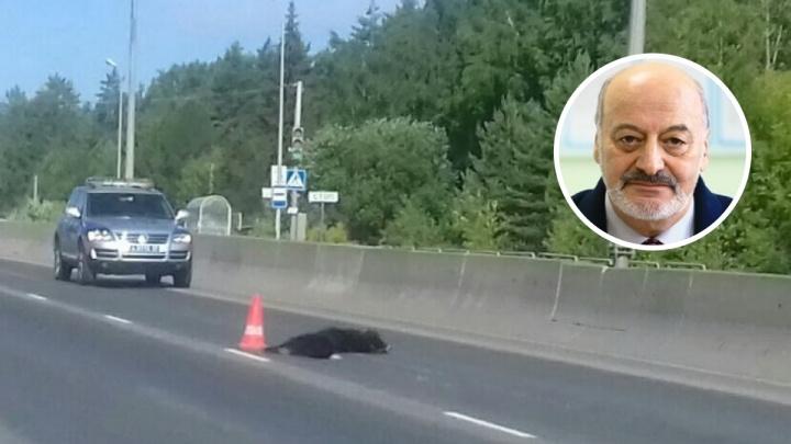 В Перми отказались возбуждать дело по ДТП, в котором погиб известный разработчик Аркадий Раскин
