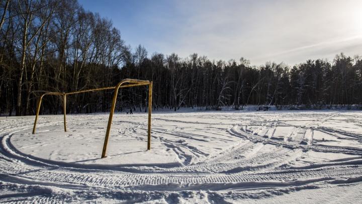 Стройка в лесу: мэрия решила отдать под застройку стадион посреди парка «Сосновый бор»