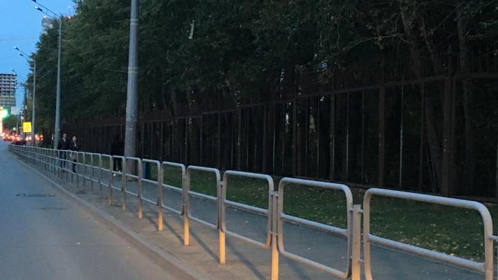 Труда-сюда:почему убрали забор вдоль челябинского зоопарка